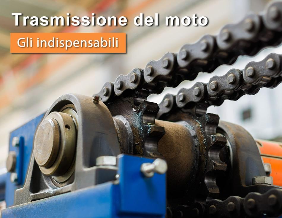 Catene Guide e Viti, tutto quello che ti serve per la trasmissione del moto, uso industria