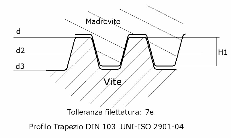 immagine dettagliata viti rullate trapezoidali Tr60x09
