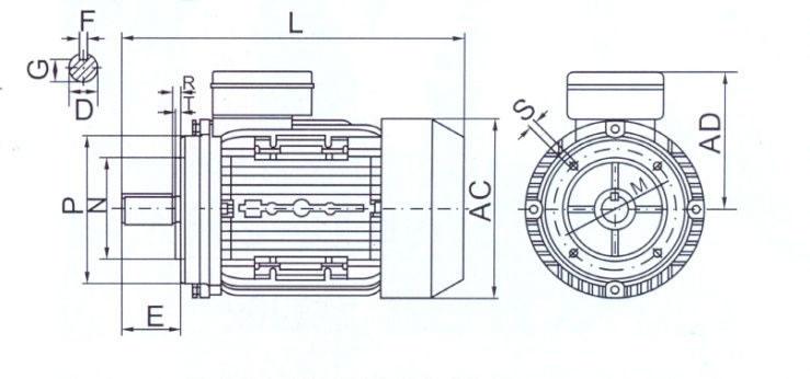 tabella dettagliata motore elettrico B14